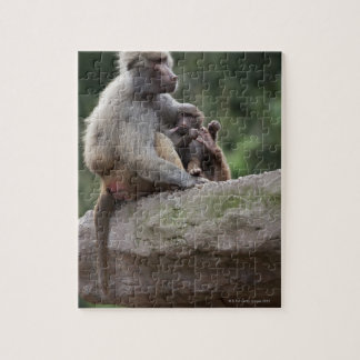 Baboon mother nursing her young jigsaw puzzle