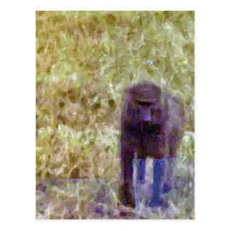 Baboon Walking Across The Grass Postcard