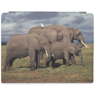 Baby African Elephant with family iPad Cover