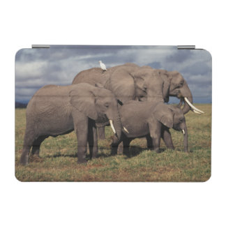 Baby African Elephant with family iPad Mini Cover