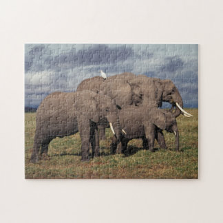 Baby African Elephant with family Jigsaw Puzzle