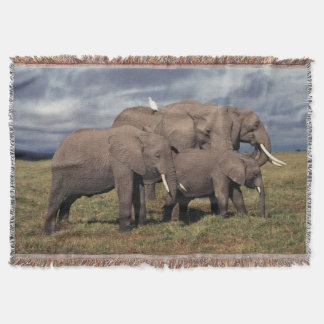 Baby African Elephant with family Throw Blanket