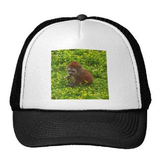 Baby Alaotran Gentle Lemur Trucker Hat