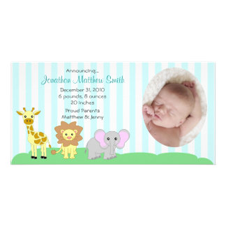 Baby Animals Birth Announcements Photo Card