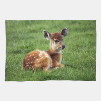 Baby Antelope Tea Towel