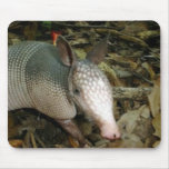 Baby Armadillo Mouse Mats