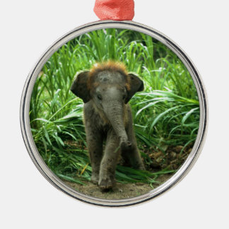 Baby Asian Elephant Christmas Ornament
