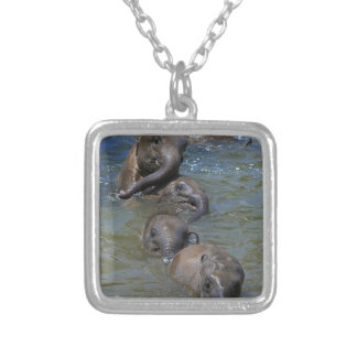 Baby Asian elephants playing in river Silver Plated Necklace