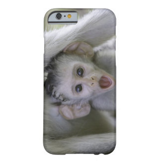 Baby baboon underneath its mother barely there iPhone 6 case