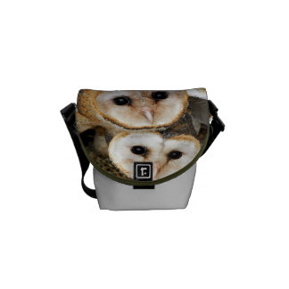 baby barn owls courier bag