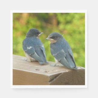 Baby Barn Swallows Nature Bird Photography Paper Napkins