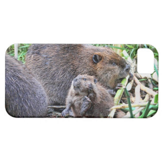 Baby Beaver and Family Photo iPhone 5 Covers