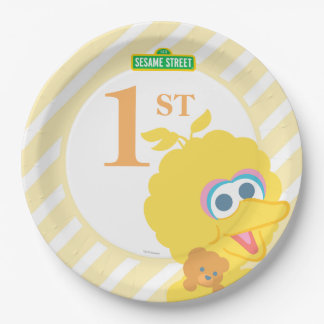 Baby Big Bird Birthday Paper Plate