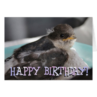 Baby bird customized greetings card