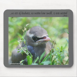 Baby Bird Kindness Quote Inspirational Mousepad