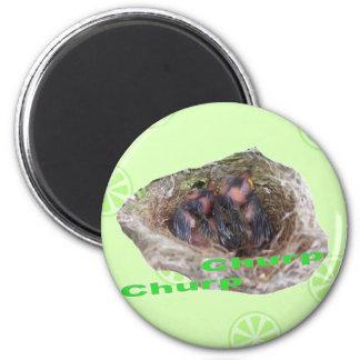 Baby Birds 6 Cm Round Magnet