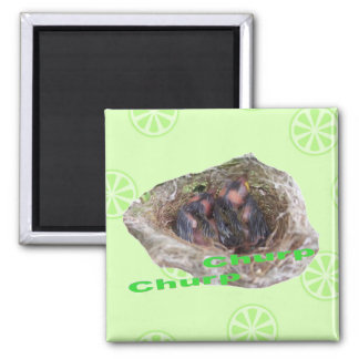 Baby Birds Square Magnet