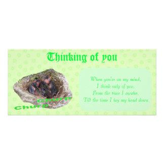 Baby Birds Rack Card Template