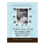 Baby Birth Announcement Blue with Cocoa Fern Postcards