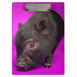 Baby Black Pig Clipboards