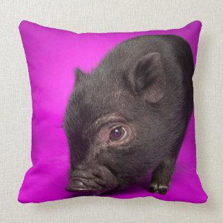 Baby Black Pig Cushion