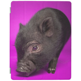 Baby Black Pig iPad Cover