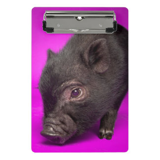 Baby Black Pig Mini Clipboard