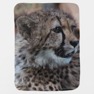 Baby Blanket with cheetah cub