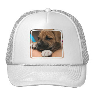 Baby Boxer Baseball Hat