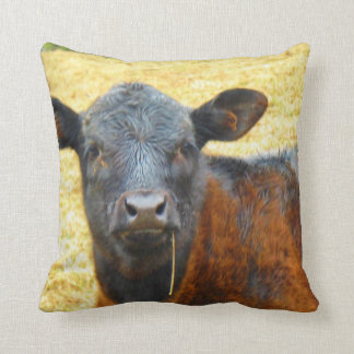 Baby Brown and Black Cow Cushion
