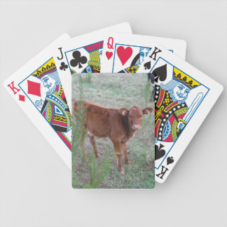 Baby Brown Cow Bicycle Card Deck