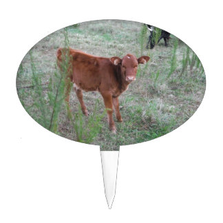 Baby Brown Cow . Cake Pick
