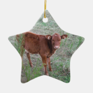 Baby Brown Cow . Ceramic Star Decoration