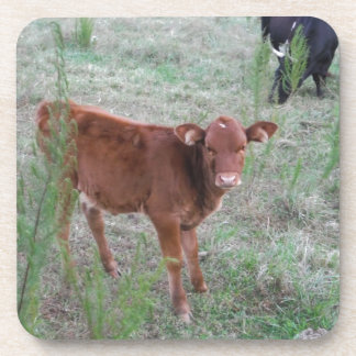 Baby Brown Cow Coasters