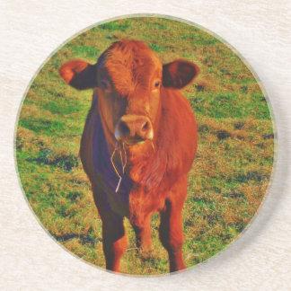 BABY BROWN COW EATING BEVERAGE COASTERS