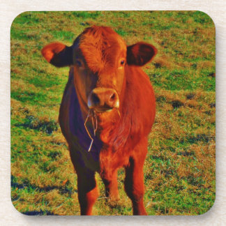 BABY BROWN COW EATING DRINK COASTERS