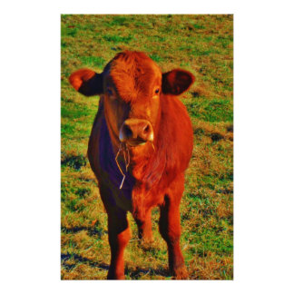 BABY BROWN COW EATING STATIONERY PAPER