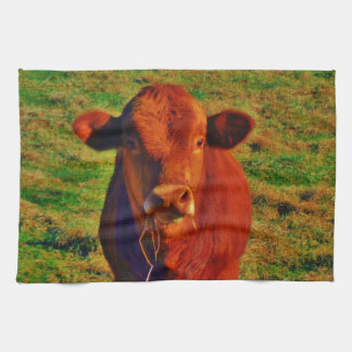 BABY BROWN COW EATING HAND TOWEL