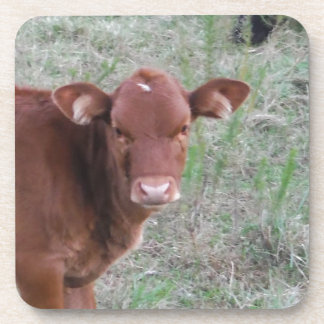Baby Brown Cow face Drink Coaster