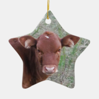 Baby Brown Cow face Christmas Ornaments