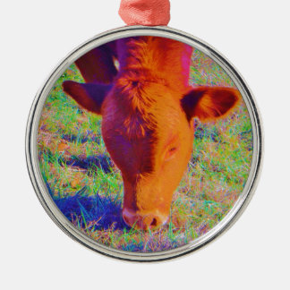 Baby Brown Cow face RAINBOW GRASS Christmas Ornaments