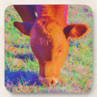 Baby Brown Cow face RAINBOW GRASS Drink Coasters