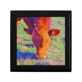 Baby Brown Cow face RAINBOW GRASS Gift Boxes