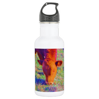 Baby Brown Cow face. RAINBOW GRASS 532 Ml Water Bottle