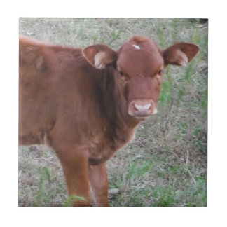 Baby Brown Cow face Ceramic Tiles