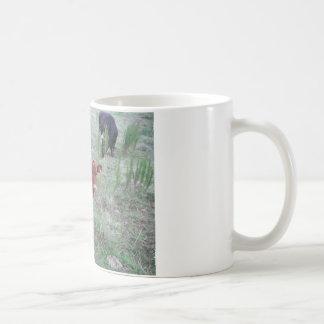 Baby Brown Cow . Mug