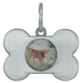 Baby Brown Cow . Pet ID Tag