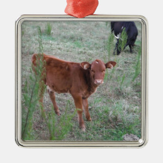 Baby Brown Cow . Silver-Colored Square Decoration