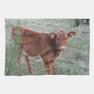 Baby Brown Cow . Towel