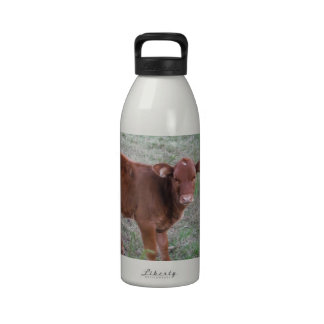 Baby Brown Cow . Water Bottles